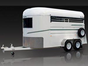 warmblood warm blood 2 horse float trailer standard angle load
