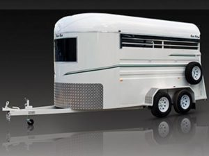 warmblood warm blood 3 horse float trailer standard angle load